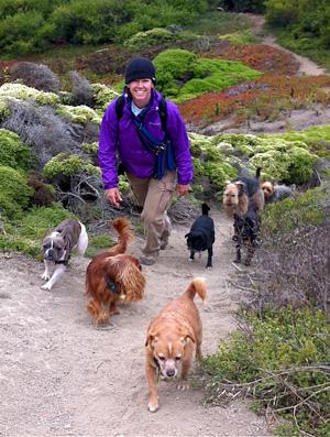 Dog walking at Fort Funston